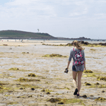 Walk to Tresco