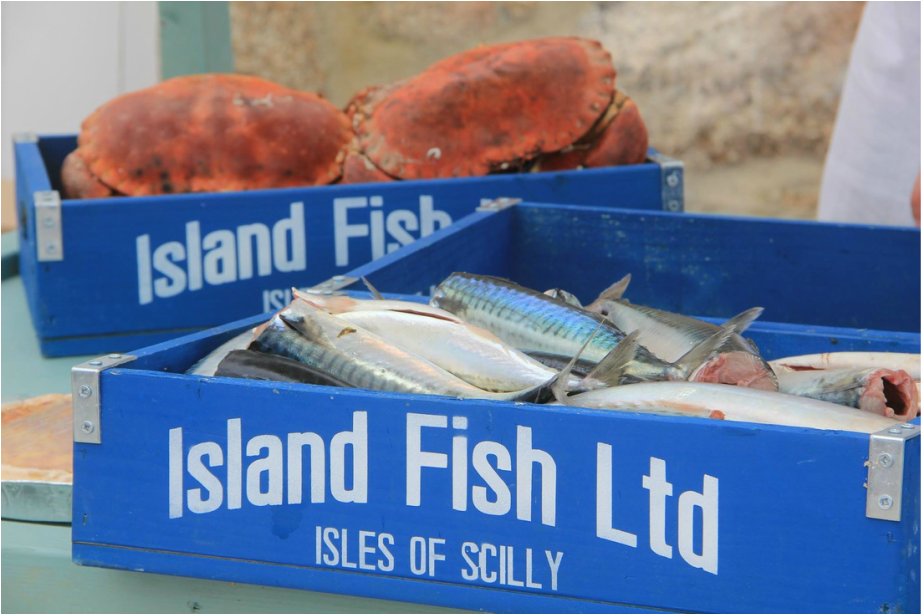 Crates of fish and crab from Island Fish Bryher Isles of Scilly